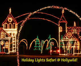 Hollywild Holiday Lights Safari 2017